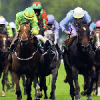 tipster Orion Hall