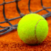 Betting tip from tennis tipster Marian Popescu