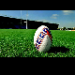 rugby tispter RugbyTips