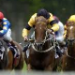 Betting tip from horse racing tipster Lewis Ross
