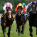 Betting tip from horse racing tipster David Bailey
