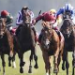 Betting tip from horse racing tipster Evan Palmer