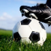 Betting tip from football tipster Cardoso