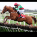 Betting tip from horse racing tipster Harley Powell