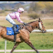 horse racing tispter Class/form