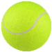 Betting tip from tennis tipster Tennis_Bet