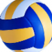 volleyball tispter Andrzej Tipster